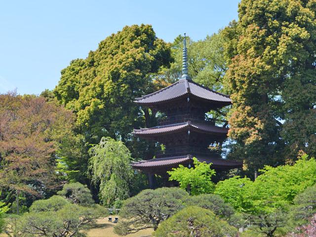 庭園の小高い上の建てられています