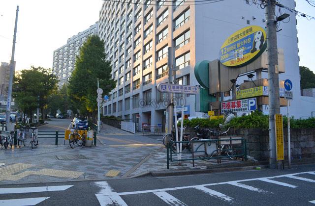 湯島駅から旧岩崎邸庭園
