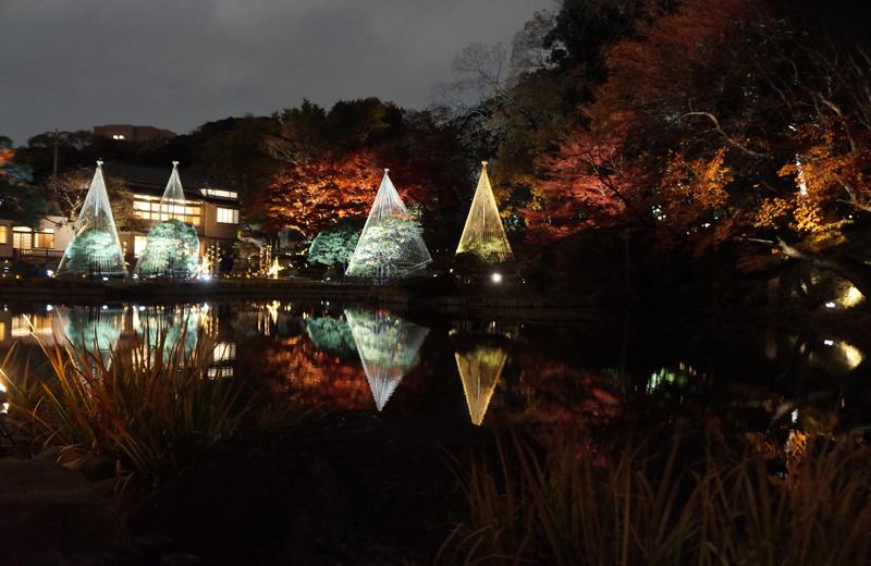肥後細川庭園ライトアップひごあかり