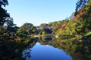 肥後細川庭園の池に映る青空