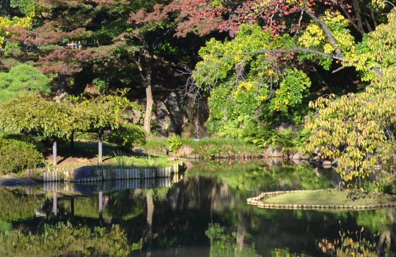 肥後細川庭園の湧き水