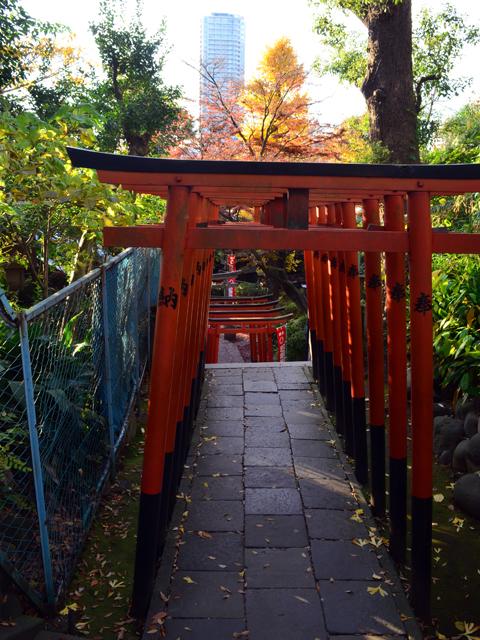 上野公園、五條天神社の赤い鳥居