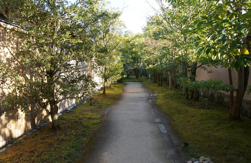 姫路好古園の庭園の細道