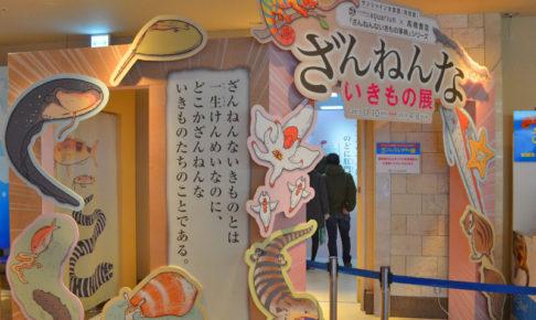 【ざんねんないきもの展】東池袋のサンシャイン水族館に行ってきた!