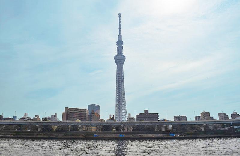 隅田公園(台東区側)から、東京スカイツリー