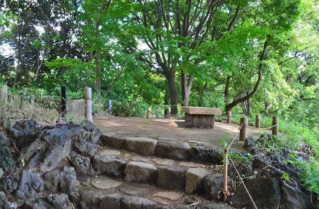 六義園。藤代峠の頂上。園内を見渡せます