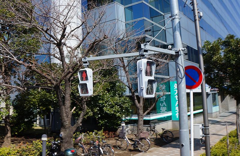 スカイダックのシートの高さは、歩行者用信号機とほぼ同じ!
