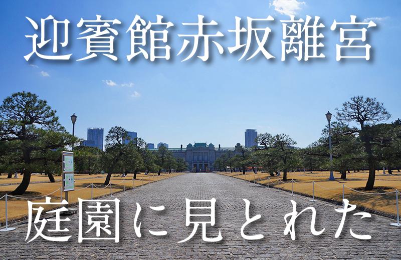 【入場自由】迎賓館・赤坂離宮の庭園が美しすぎて、見とれてた!