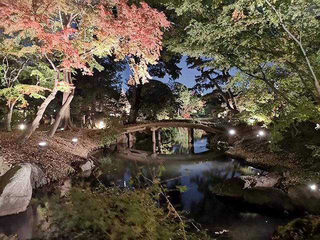 山陰橋(さんいんきょう)/六義園ライトアップ